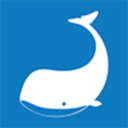 Whalebrokers